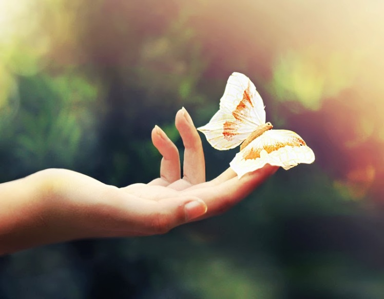 mão borboleta