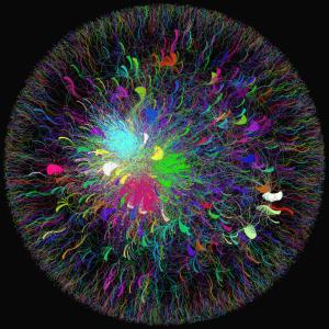 """A imagem representa o termo """"Dilma"""" no Twitter em junho/2013: capturada em Labic.net - Laboratório de Cibercultura"""
