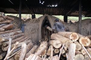 As carvoarias no Norte-Nordeste de Minas ainda são foco da prática desumana - Foto capturada na rede